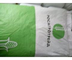 Семена гибридов кукурузы ксс5290