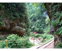 Сдается уютный коттедж /Эко-Дом в Гуамском ущелье - Фотография 5